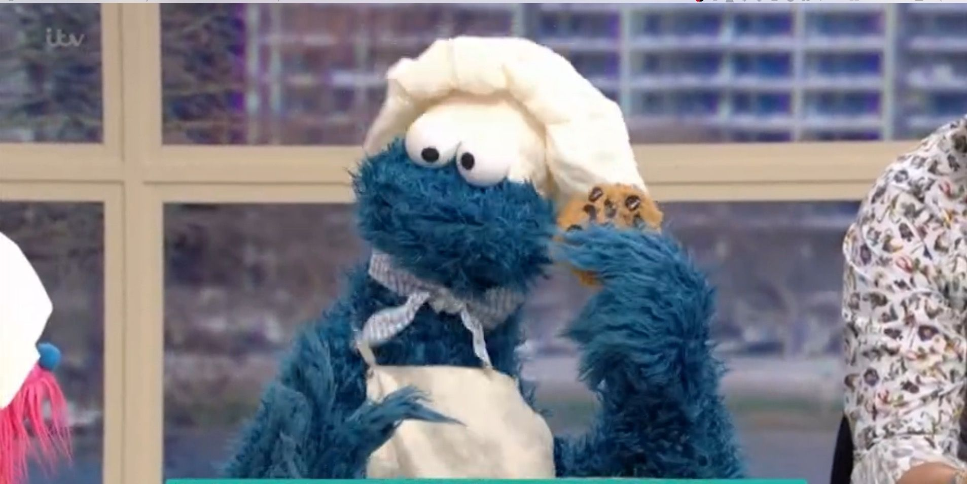Cookie Monster on This Morning