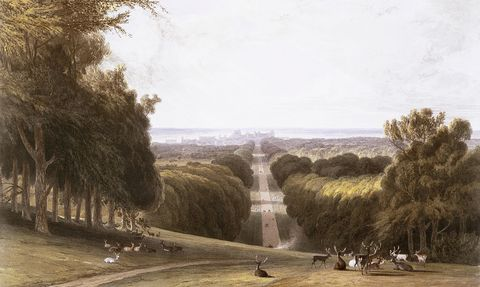 The Long Walk - Windsor Park by William Daniell