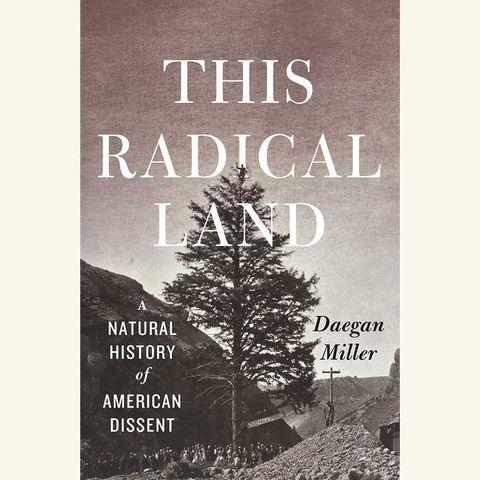this radical land, daegan miller
