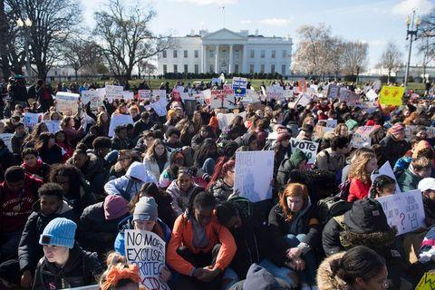 us politics guns schools protest