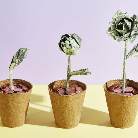 three origami dollar flowers in a row