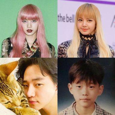 k pop 韓国