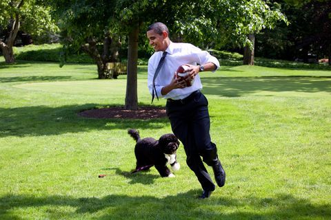 オバマ元大統領、「最大の味方」愛犬ボーの死を語る