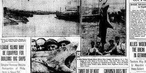 historia real tiburon spielberg