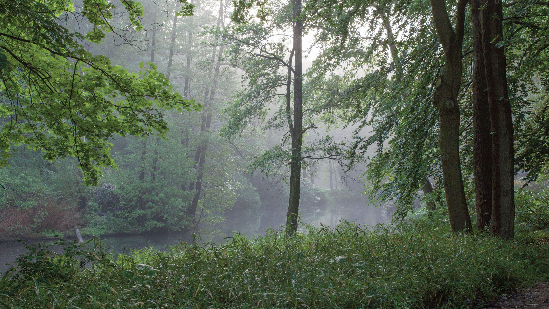 "Tiergarten: Berlin's ""Landscape of Transgressions"""