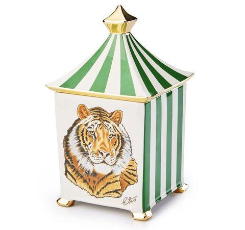 Product, Cage, Felidae, Wildlife, Circus, Performance, Carnivore,