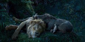 El rey león remake timon pumba