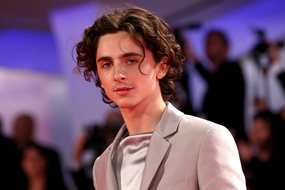 Are You In The Right Headspace To See A Picture of Timothée Chalamet That Could Hurt You?