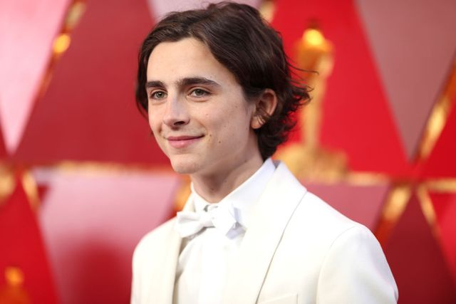 timothée chalamet's dating history who has the actor been linked to