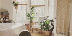 planten-leven