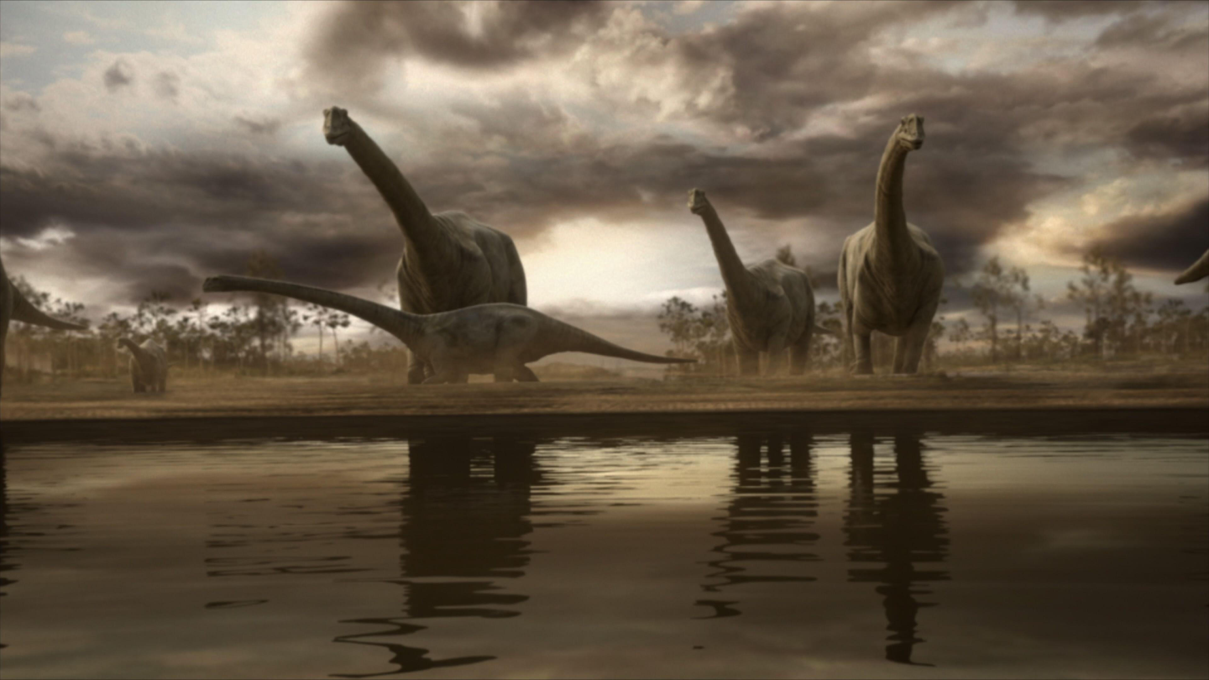 'El día de la Tierra': Así es la programación especial de DMAX