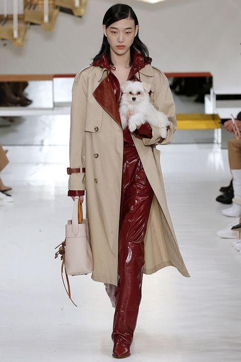 tods fall 2018 puppy