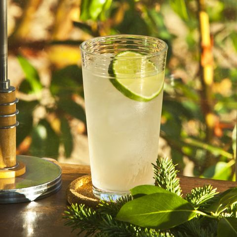 Tom Collins cocktail in a garden setting