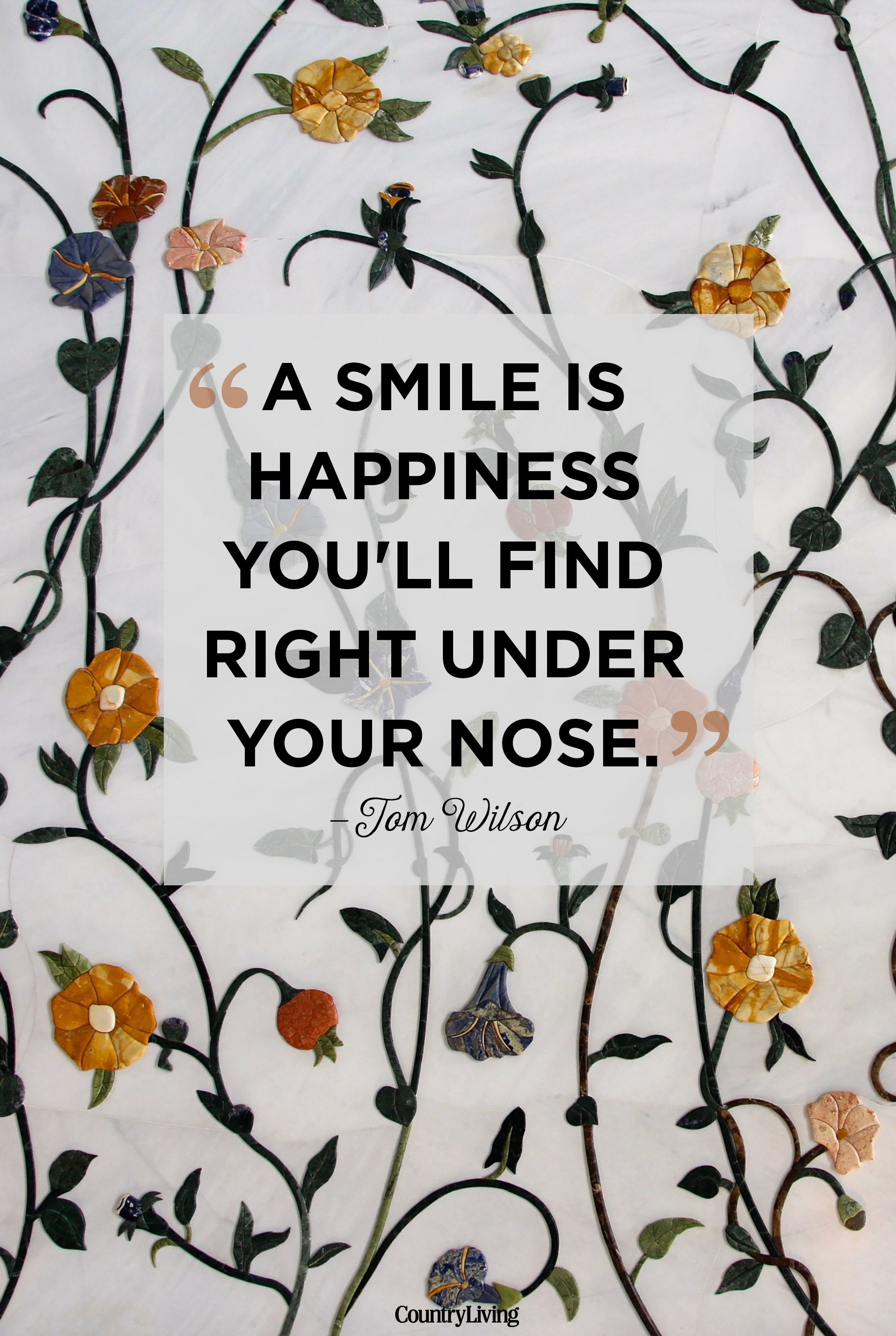 10 Cute Smile Quotes Best Quotes That Will Make You Smile