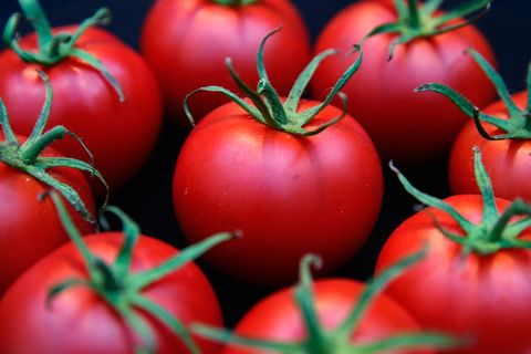 Natural foods, Local food, Tomato, Bush tomato, Vegetable, Solanum, Fruit, Food, Red, Plant,