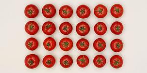 Hoe tomaten bewaren