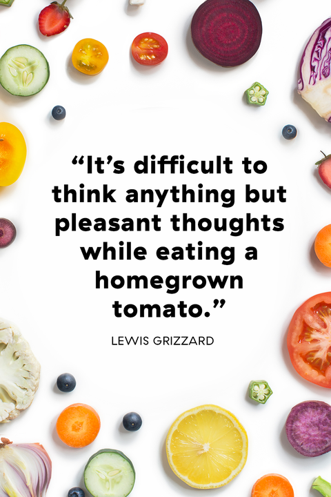 20 Best Food Quotes From Famous Chefs Great Sayings About