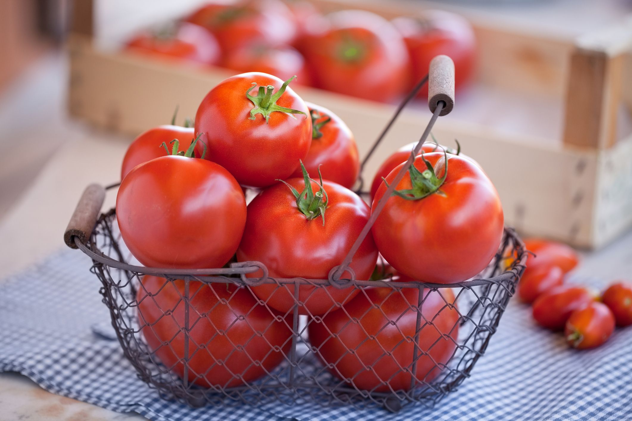 Is Tomato a Fruit or Vegetable? Both, Depending on Science
