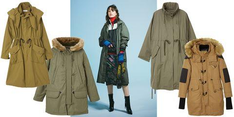 Clothing, Outerwear, Overcoat, Coat, Fur, Parka, Fashion, Jacket, Sleeve, Hood,