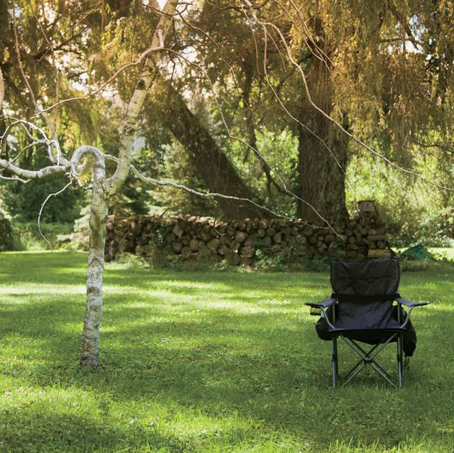 lone camp chair on a scenic  lawn  yard with sunny willow trees in background taken on a bright and beautiful summer day