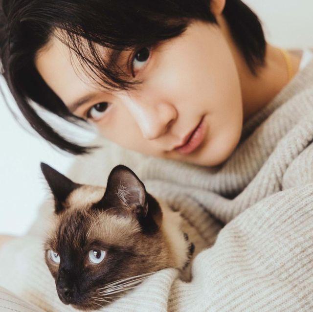8月8日は世界猫の日! 韓国セレブと愛猫の仲良しフォトギャラリー