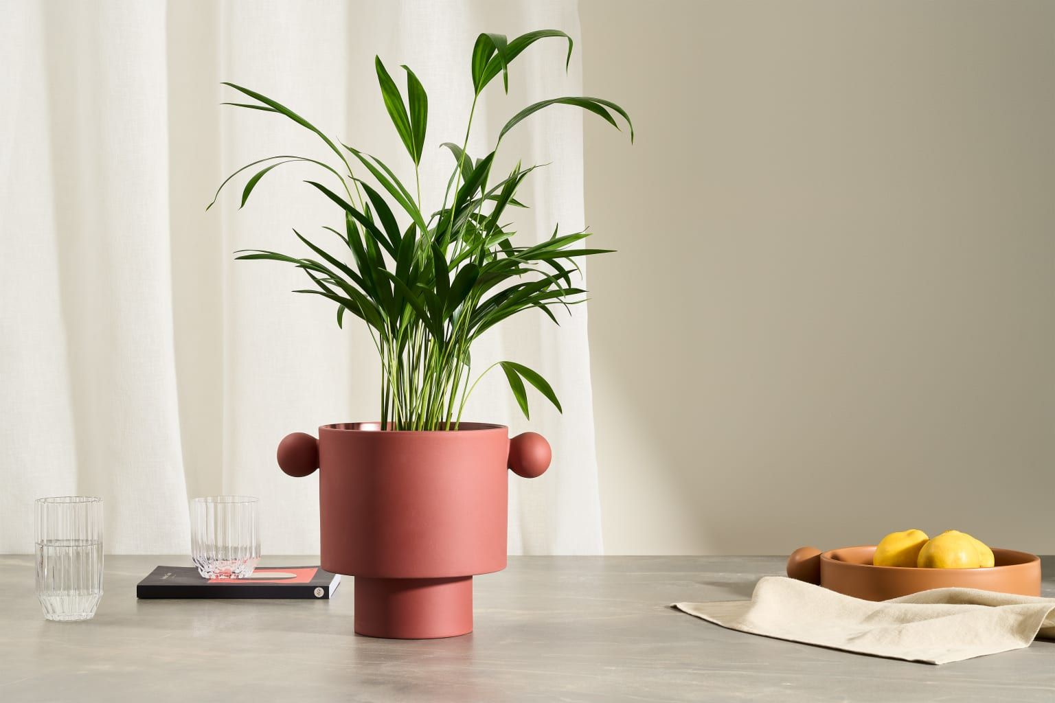 8 gifts perfect for a plant parent