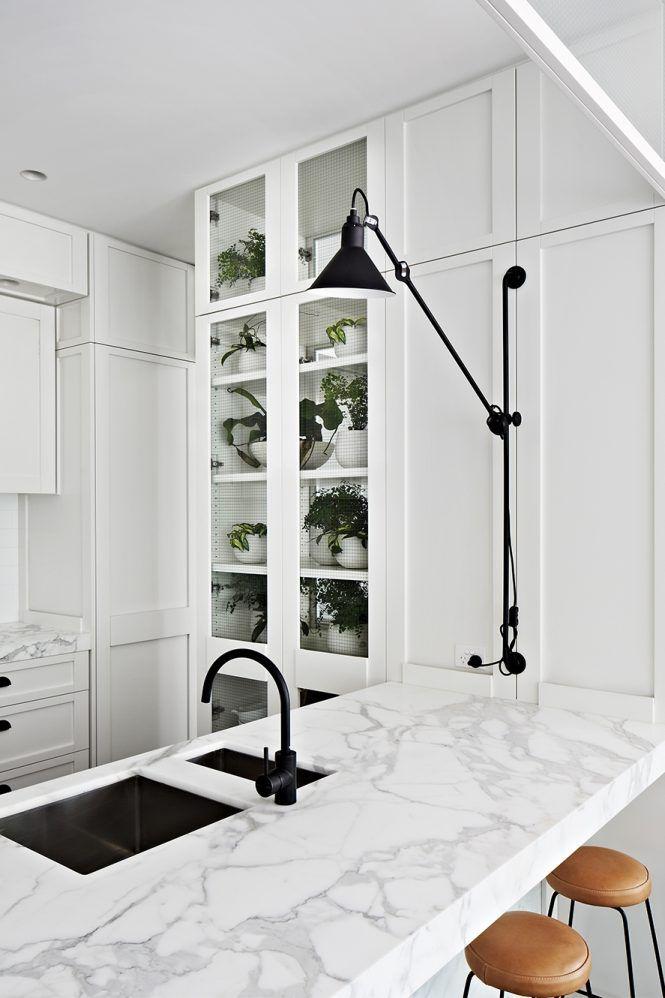 kitchen plant ideas