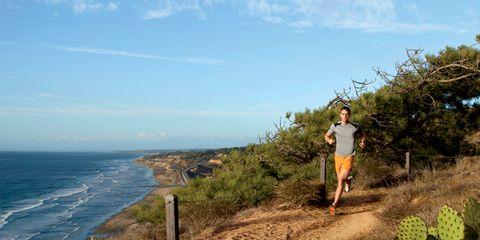 Torrey Pines State Natural Reserve, California