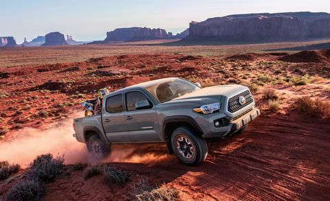 Toyota Tacoma Off Road Animal