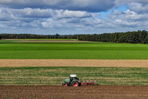 Field, Agriculture, Plain, Farm, Sky, Grassland, Soil, Natural environment, Grass, Crop,