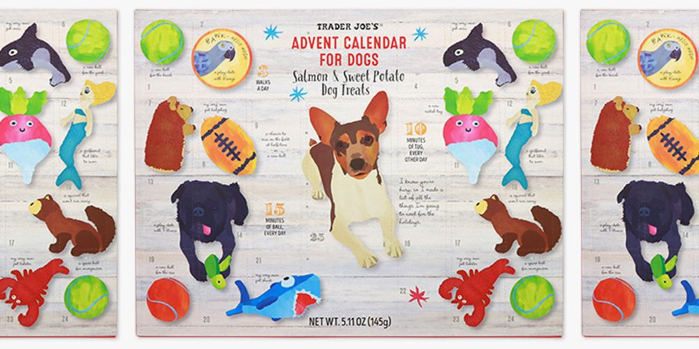 Corgi Puppy Christmas Countdown 2020 Trader Joe's Advent Calendar for Dogs Will Have Your Pup Loving