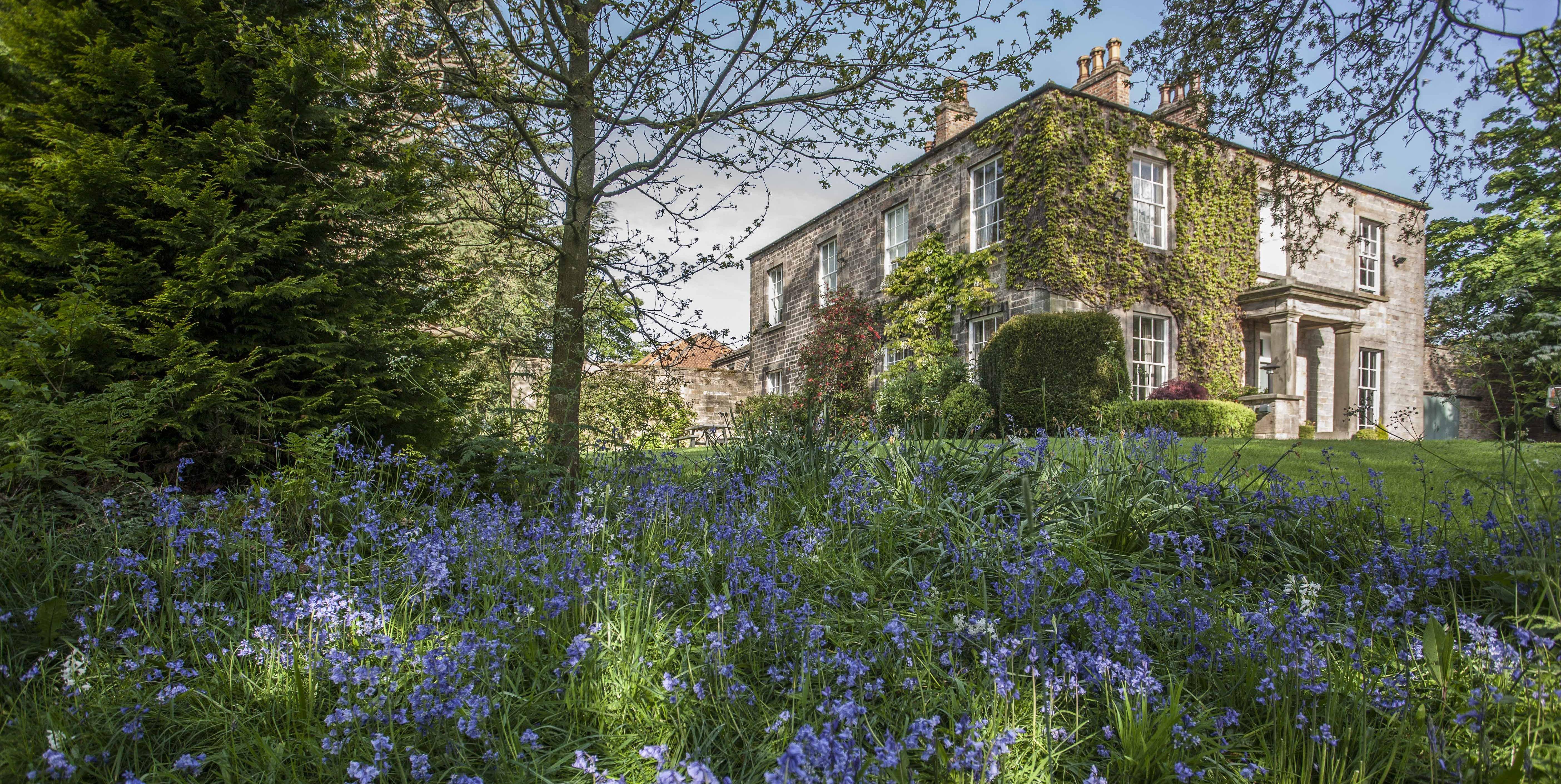 Trafalgar House - Country Durham - garden - Savills