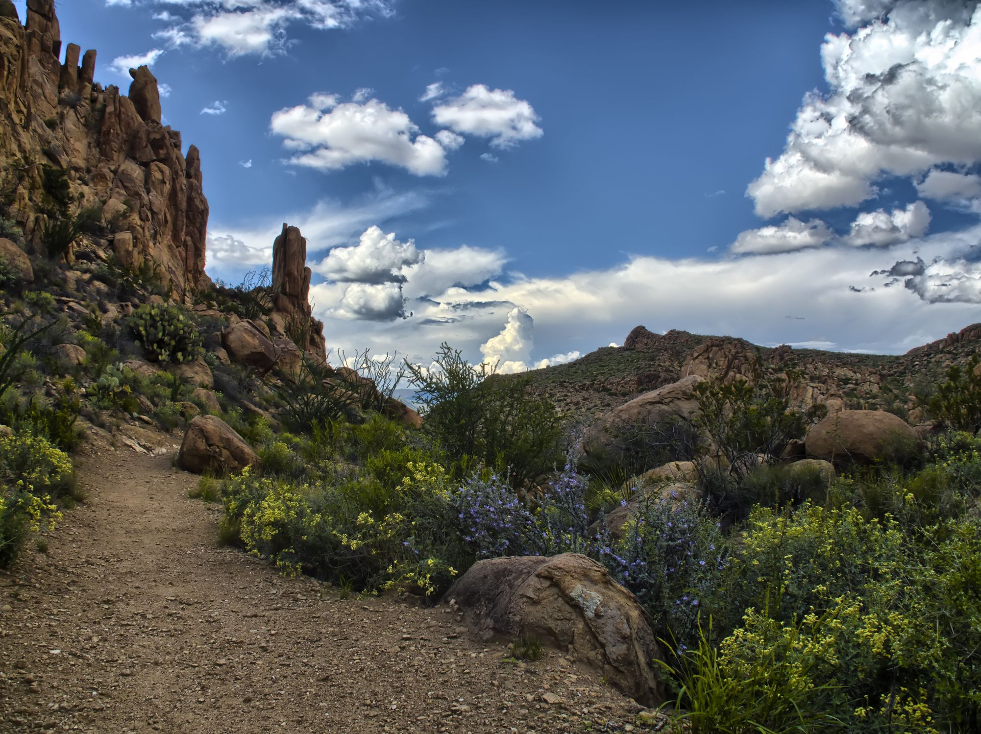 Trail to Balanced Rock in Big Bend National Park