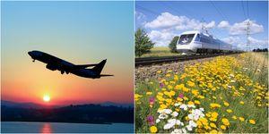 plane vs train