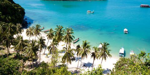 Tropics, Palm tree, Vegetation, Tree, Sky, Sea, Caribbean, Azure, Vacation, Arecales,
