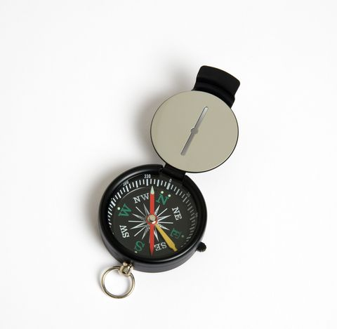 Sighting compass with dial pointing to magnetic north