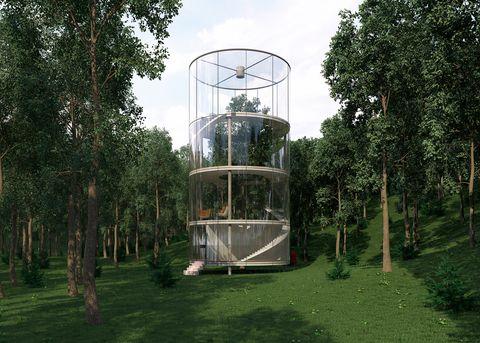 La casa di vetro Tree in the House