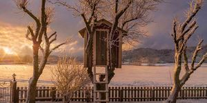 Tree house hotels winter