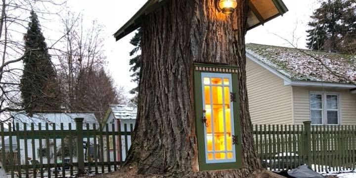 This 110-Year Old Tree Is the Tiny Library of Our Dreams