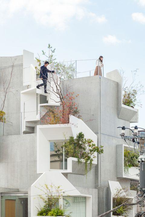 Tree-ness House. De Akihisa Hirata.