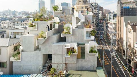Treeness house o la casa que simula la estructura arquitectónica de un árbol
