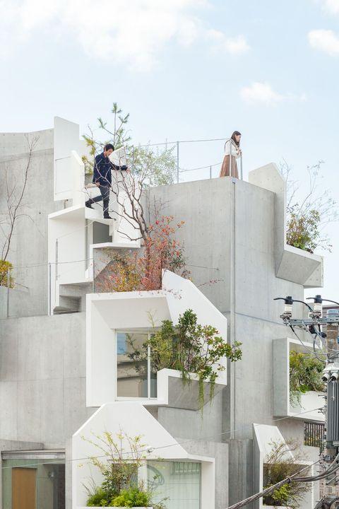 Treeness house o la casa que simula la estructura arquitectónica de un árbol deAkihisa Hirata en Tokyo