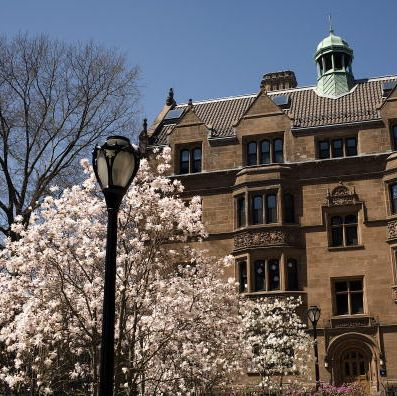 new haven's cultural offerings make the city an attractive destination