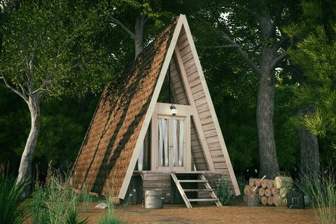 Triangle Forest House