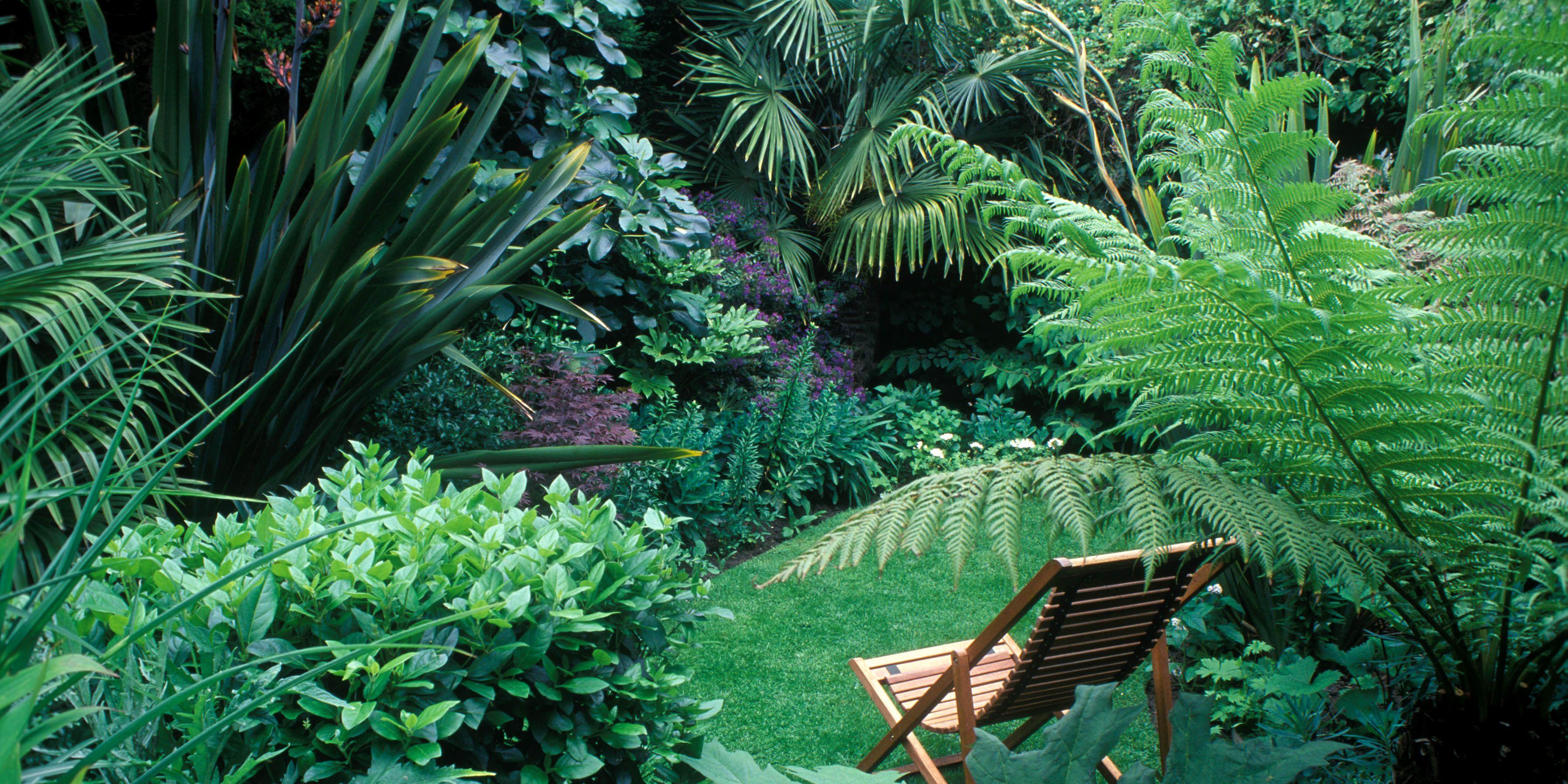 5 tips for a small garden