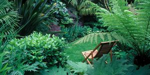 5 tips for a small garden