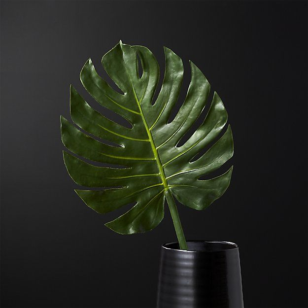 Trend Alert Monstera Palm Leaves