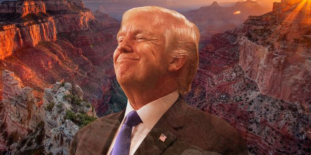 donald trump in the grand canyon