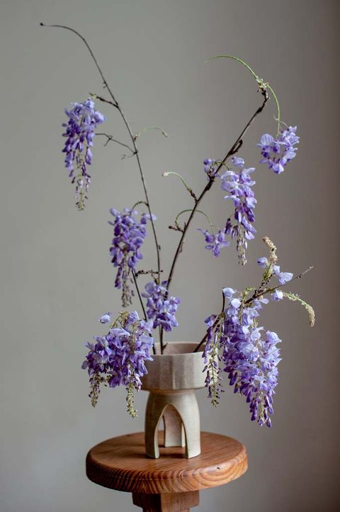 Flower Arranging Wisteria