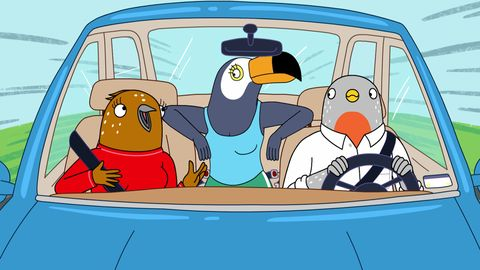 Netflix Cancelled shows - Tuca & Bertie